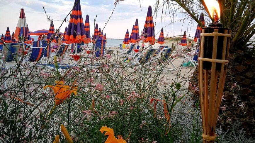 Ombrelloni Ristorante Chalet Lido Nordest Ristorante Di Pesce Pizzeria Spiaggia Mare Grottammare San Benedetto Del Tronto Ascoli Piceno Marche